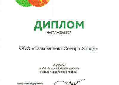 Диплом-экология-большого-города-2016-г.